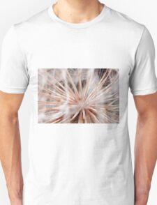 A Seeds Network T-Shirt