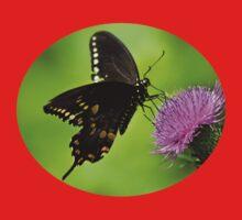 Spicebush Swallowtail Butterfly Art Baby Tee