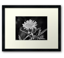 ©NS The Stranger Yellow And The Thing 1IA Monochrome. Framed Print