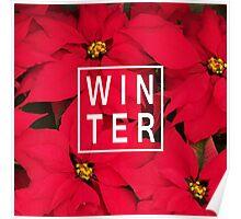 "Beautiful ""Winter"" Typography & Poinsettias Poster"