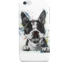 Boston Terrier Paint Splatter iPhone Case/Skin