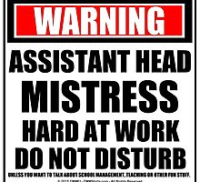 Warning Assistant Headmistress Hard At Work Do Not Disturb by cmmei
