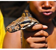 Scaled Boa Photographic Print
