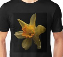 First daffodil of spring Unisex T-Shirt