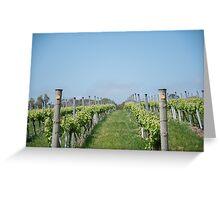 Vineyard rows Greeting Card