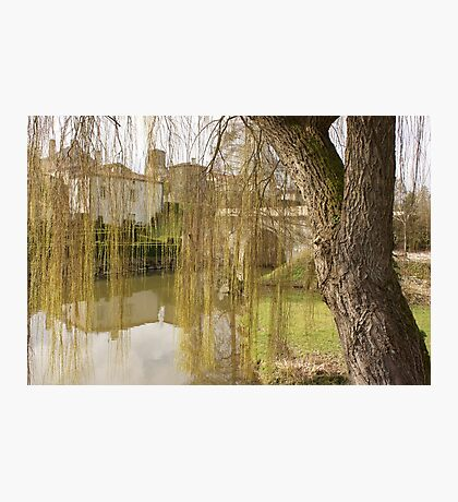 Behind the Willow Photographic Print