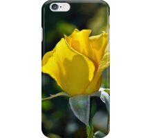 Single yellow rose iPhone Case/Skin