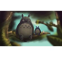 Totoro and his Friends Photographic Print