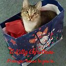 KITTY CHRSTMAS by Pauline Evans
