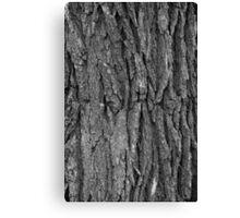 Burr Oak Bark (greyscale) Canvas Print