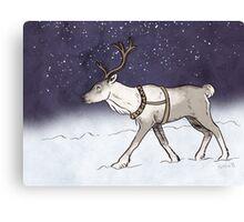 Reindeer Night Canvas Print