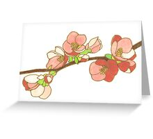 Pink on White Blossoms Greeting Card