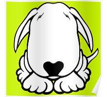 Dobby Ears Bull Terrier  Poster