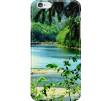 Payette River At Rest iPhone Case/Skin