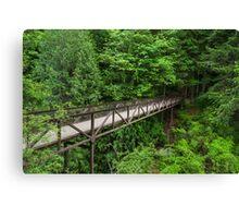 Englishman River Falls Bridge Canvas Print