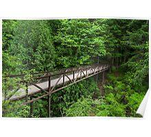 Englishman River Falls Bridge Poster
