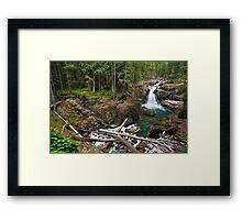 Silver Falls on the Ohanapecosh Framed Print