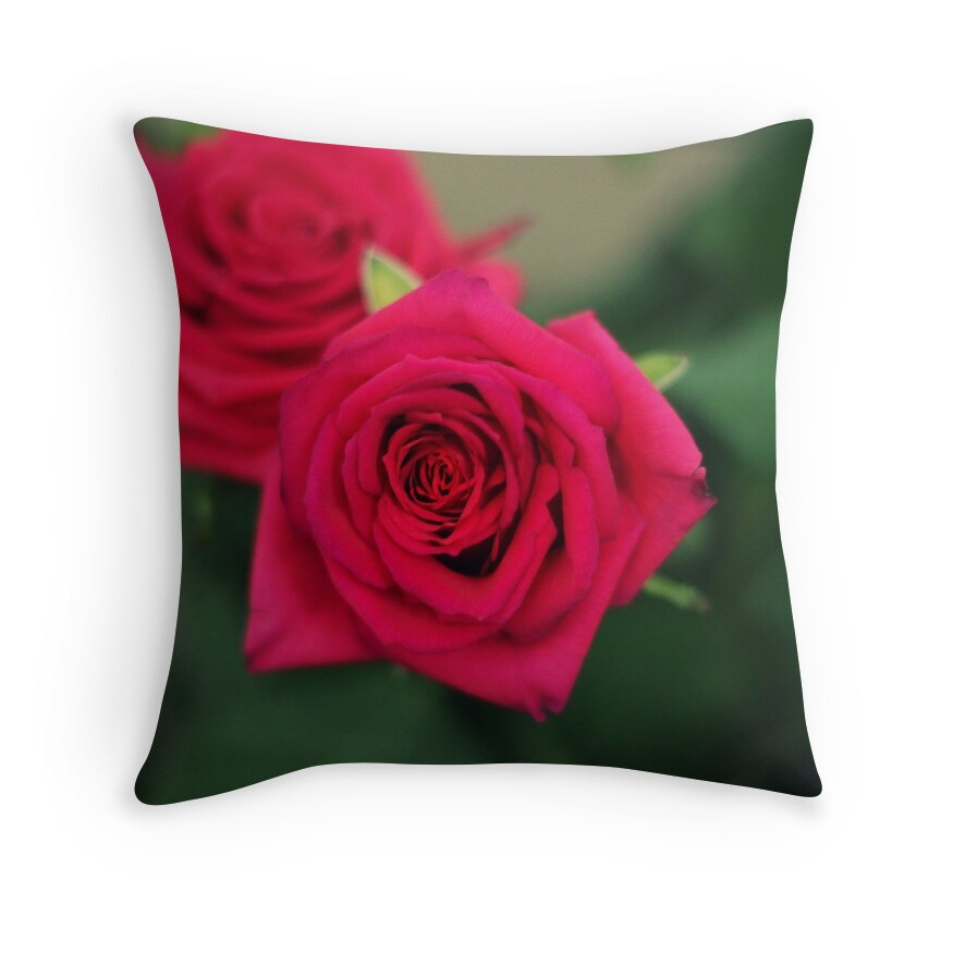 Red Rose Decorative Pillow :