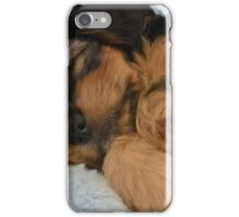 Cute Puppy Sleeping iPhone Case/Skin