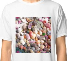 COLORFUL SEA SHELLS Classic T-Shirt