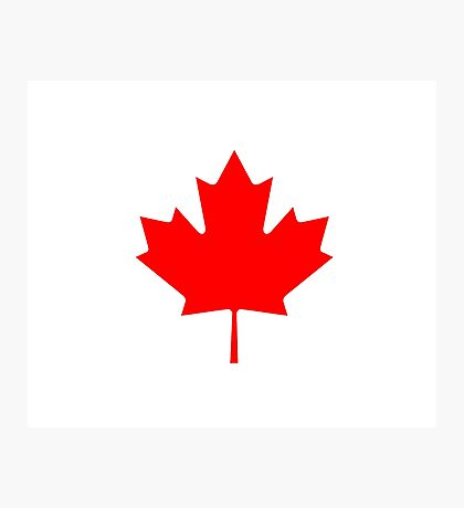 Canadian Flag - National Flag of Canada - Maple Leaf T-Shirt Sticker Photographic Print