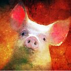 Sunset Piggy Wig by Clare Colins