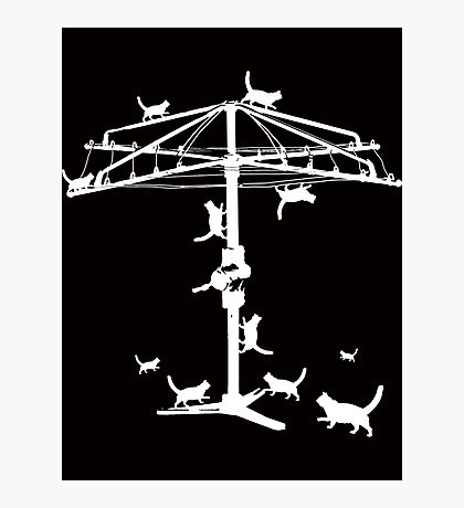 Hills Hoist with cats Photographic Print