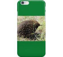Echidna, Murray Valley Highway, Victoria, Australia 2013 iPhone Case/Skin