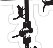 Hills Hoist cats - 2 Sticker