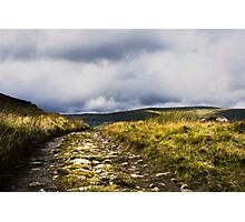 snowdonia path Photographic Print