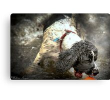 Just One More Second Canvas Print