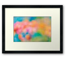 colors from autumn Framed Print