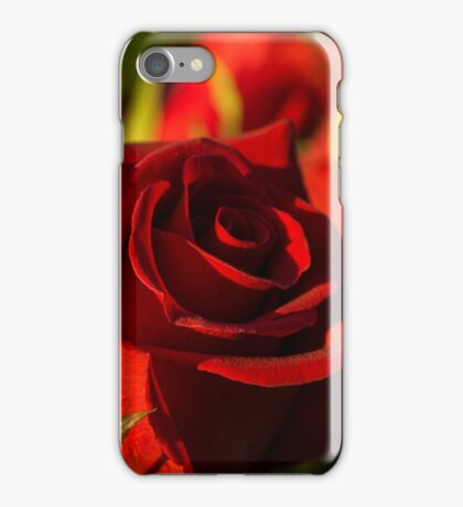 Ruby Red Birthday Roses  iPhone Case/Skin