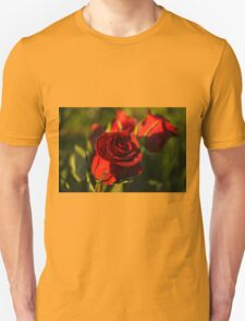 Ruby Red Birthday Roses  T-Shirt