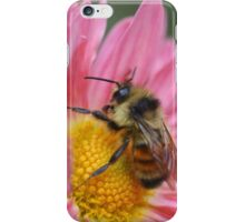 Bumble Bee On Pink Daisy Flower iPhone Case/Skin