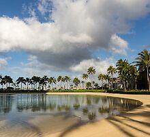 Tropical Beach Joy - Lagoon Shadows and Reflections of Palm Trees by Georgia Mizuleva