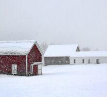 April 1st Blizzard - The Lindscott Farm Sticker
