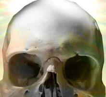 Skull Sunset Sticker