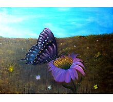 A Butterfly's World Photographic Print