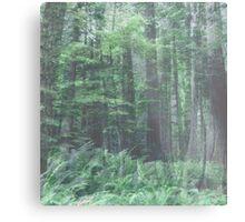 Blue Woodland Metal Print