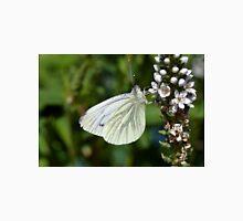 Green Veined White Butterfly - Pieris napi Unisex T-Shirt