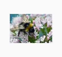 Honey Bee Feeding Unisex T-Shirt