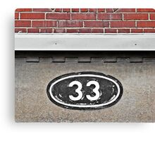 The Number 33  Canvas Print