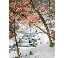 Winter Woodland Stream Photographic Print