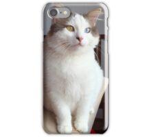 Turkish Van Pet Cat iPhone Case/Skin