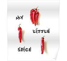 My little spice Poster