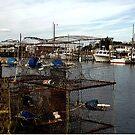November in Bishop's Head, Quiet Harbor by Hope Ledebur