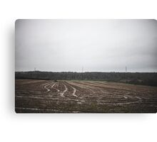 Form in the countryside Canvas Print