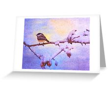 Black Cap Chickadee Winter Twilight Greeting Card