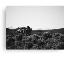 Elephant Riding in South Africa Canvas Print